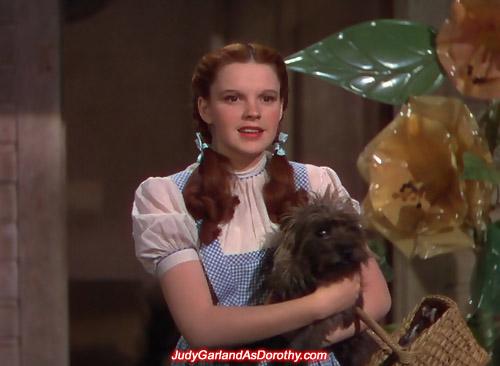 Hollywood beauty Judy Garland as Dorothy arrives in Oz via a tornado