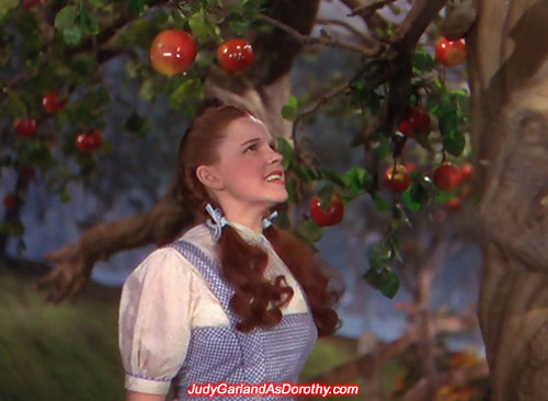 Judy Garland as Dorothy encounters strange creatures like the talking trees
