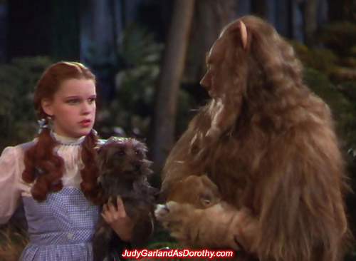 Judy Garland as Dorothy is angry with the Cowardly Lion