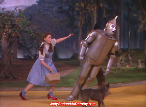 Judy Garland as Dorothy rushes to the Tin Man's aid as he loses balance