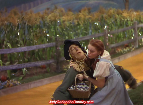Judy Garland as Dorothy takes hold of the Scarecrow as he falls to the ground