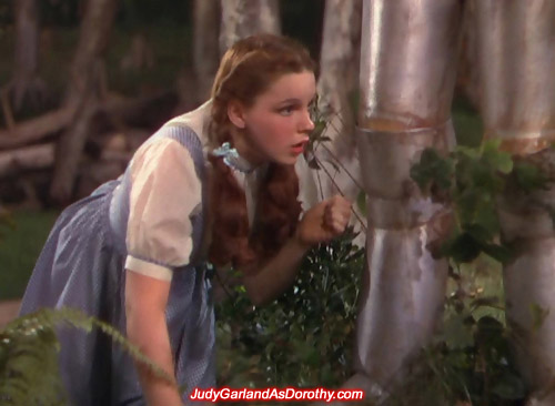 MGM sweetheart Judy Garland as Dorothy examines something made out of tin