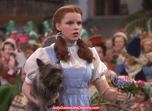 The adorable Judy Garland as Dorothy felt like a giant in Munchkinland